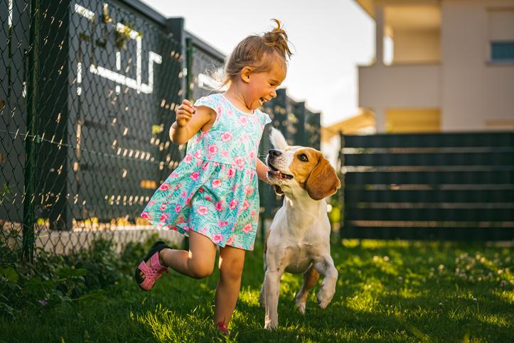 개를 대하는 아이와 부모의 자세