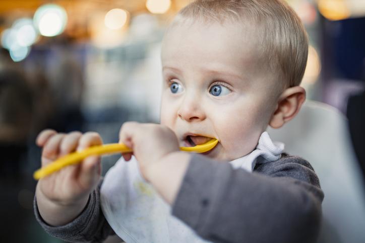 0~12개월 우리 아기 성장 발달 보고서 (11~12개월)